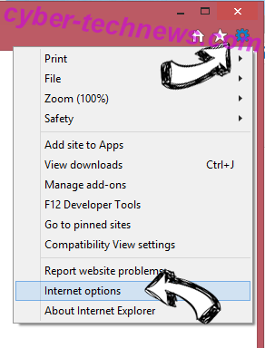 VideoConverterHD toolbar IE options