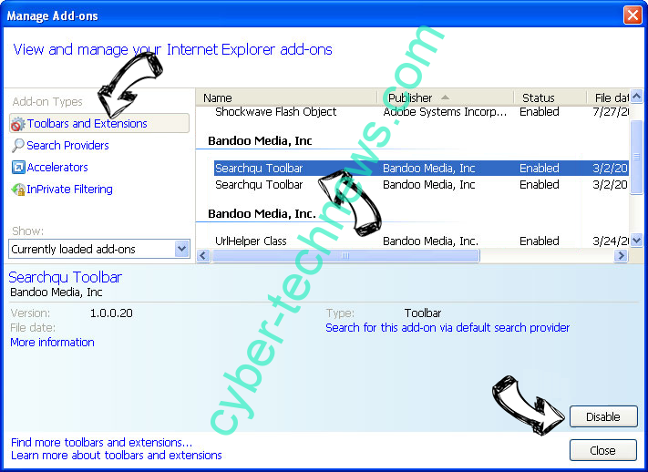 TotalRecipeSearch virus IE toolbars and extensions