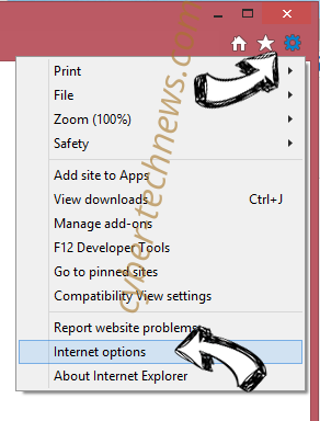 Kittens New Tab Browser Hijacker IE options
