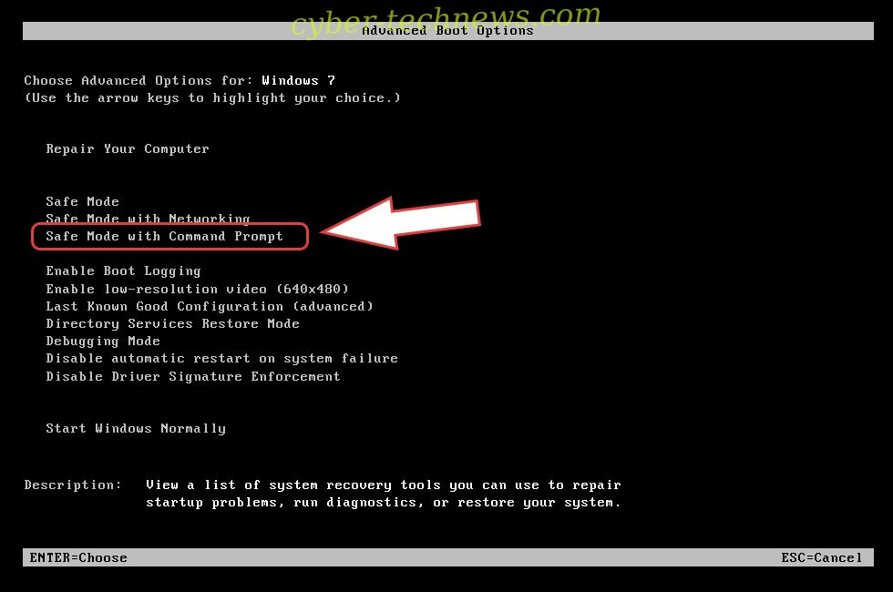 Remove .langolier file virus - boot options
