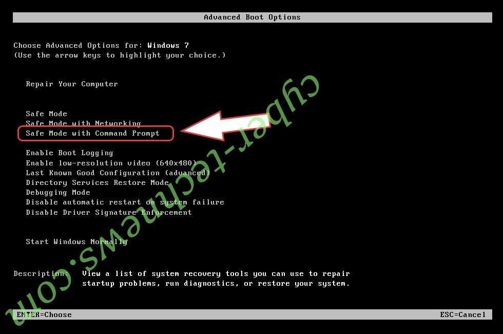 Remove .Z9 ransomware virus - boot options
