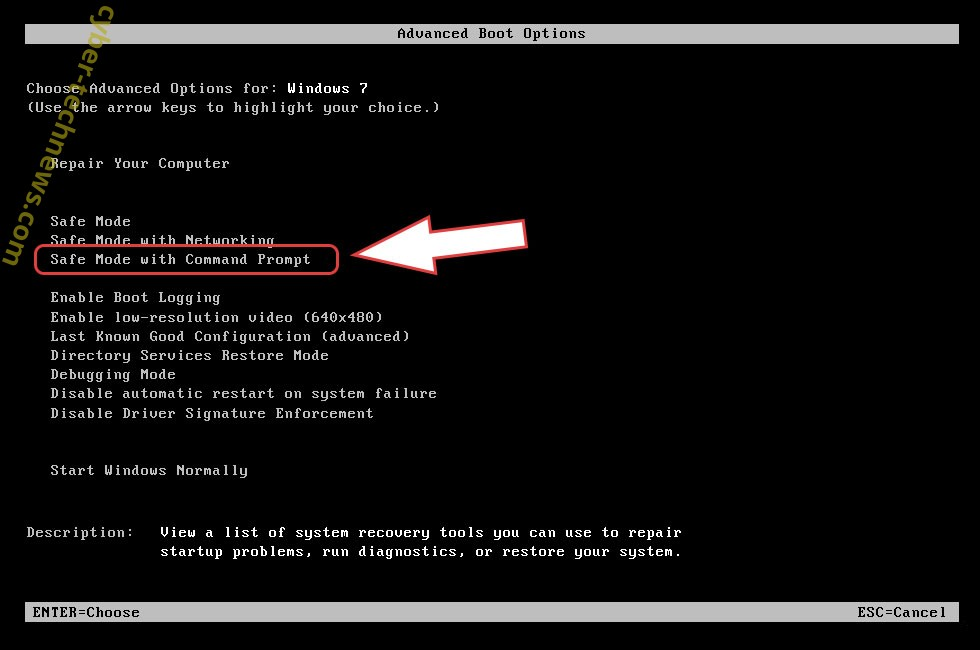 Remove Ntuseg Cryptovirus - boot options