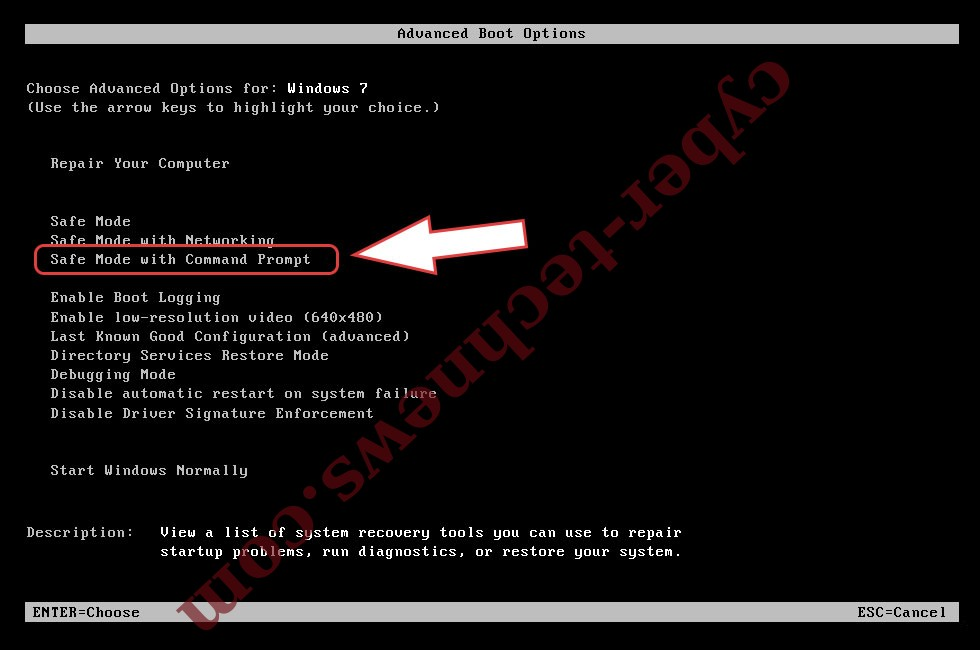 Remove Minotaur ransomware - boot options