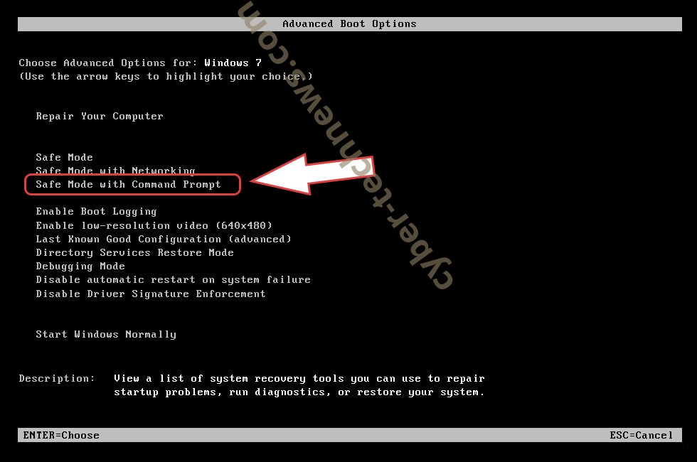 Remove .cammora file virus - boot options