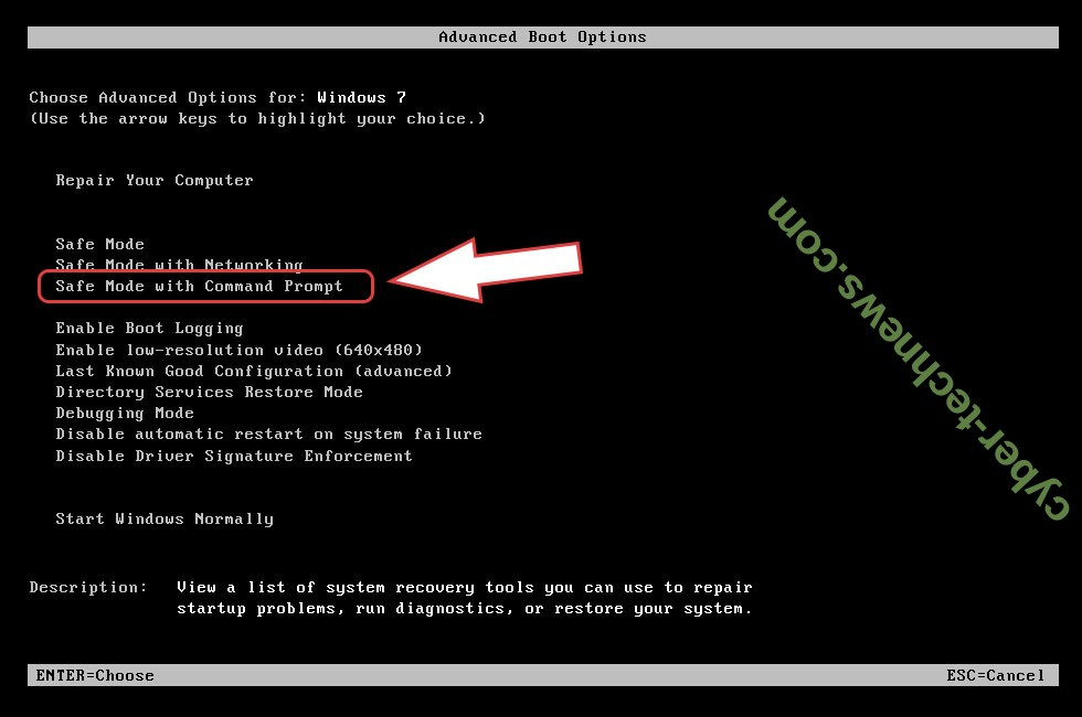 Remove PROMORAD File Virus - boot options