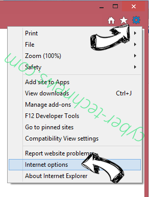 Lite PDF Reader Virus IE options