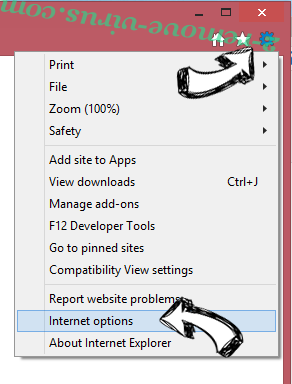 Pdf2DocPro IE options