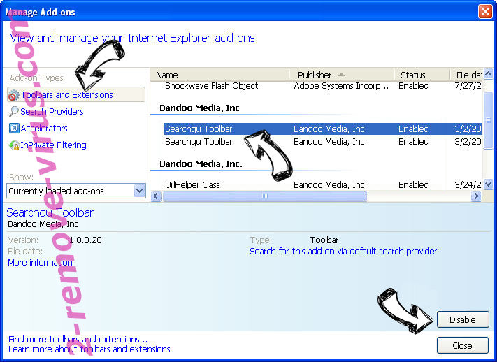Flash Player Premium SMS IE toolbars and extensions