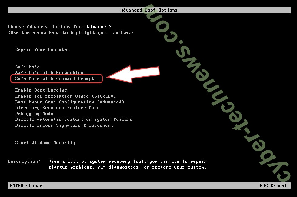Remove Guarded extension virus - boot options