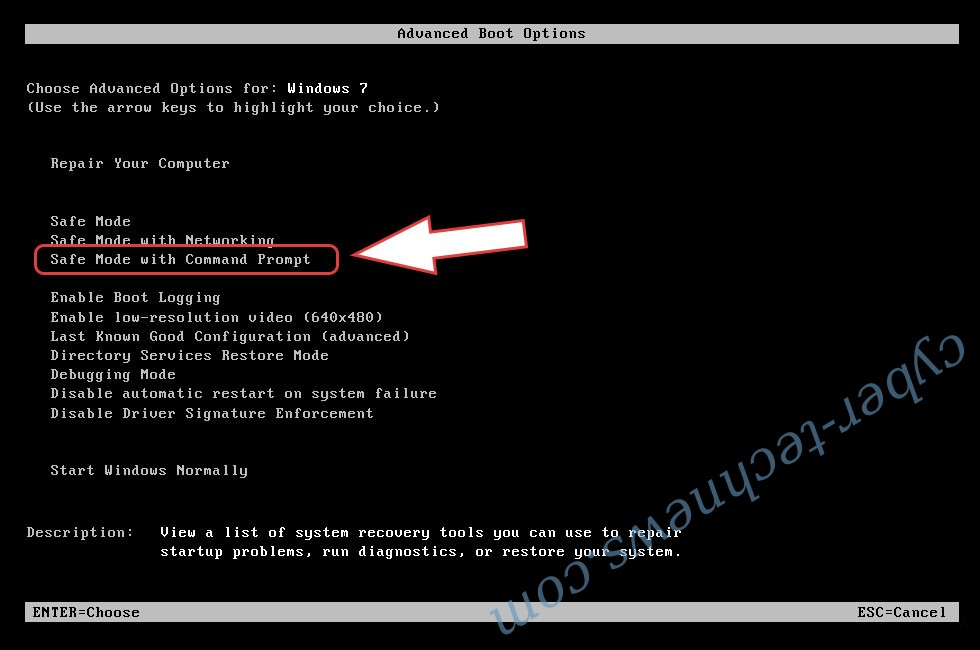 Remove Ransom102 Ransomware - boot options