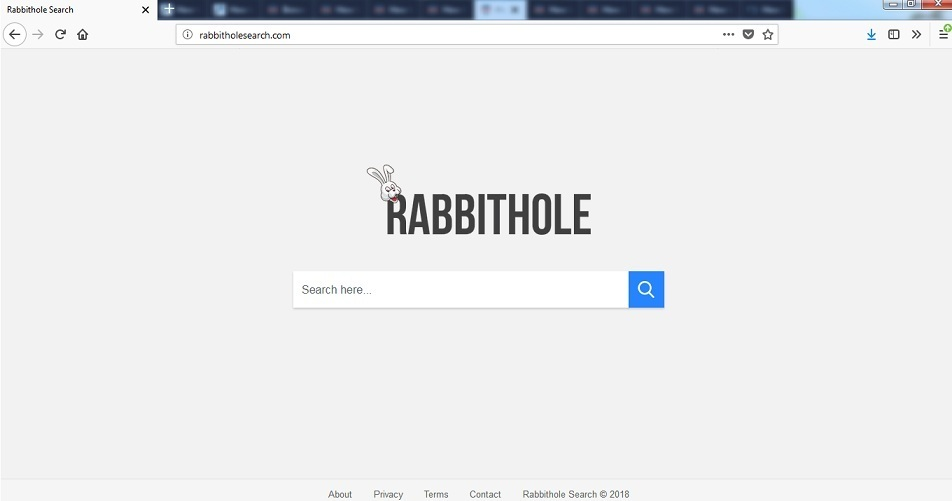 Rabbitholesearch.com-_2.jpg