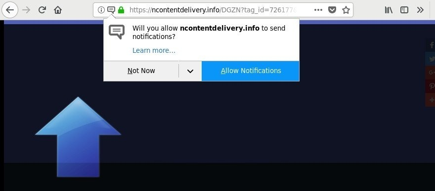 Ncontentdelivery.info-_2.jpg